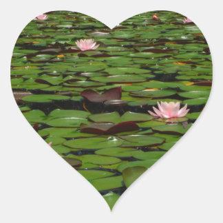 Pink lotus water lily flower pond sticker
