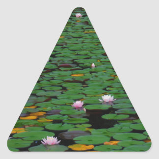 Pink lotus water lily flower pond triangle sticker