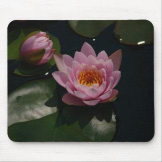 Pink Lotus Waterlilies Mouse Pad