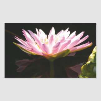 Pink Lotus Waterlily Rectangular Sticker