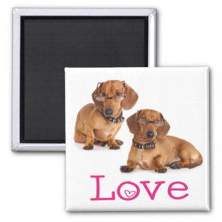 Pink Love Dachshund Puppy Dog Fridge Magnet