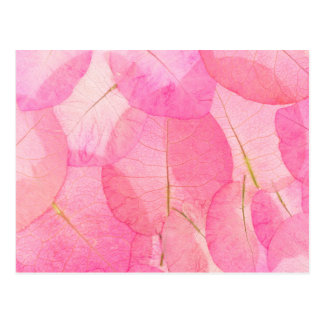 pink macro leaves postcard