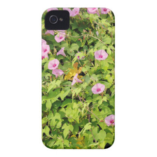 Pink Morning Glories Bush iPhone 4 Cover