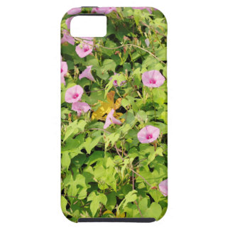 Pink Morning Glories Bush iPhone 5 Cover