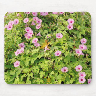 Pink Morning Glories Bush Mouse Pad