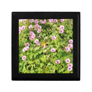 Pink Morning Glories Bush Small Square Gift Box