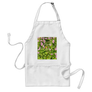 Pink Morning Glories Bush Standard Apron