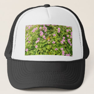 Pink Morning Glories Bush Trucker Hat