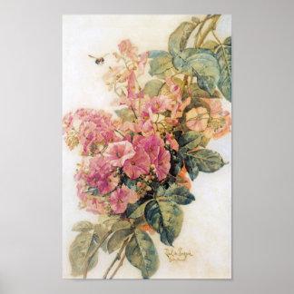 Pink Morning Glories Vintage Poster