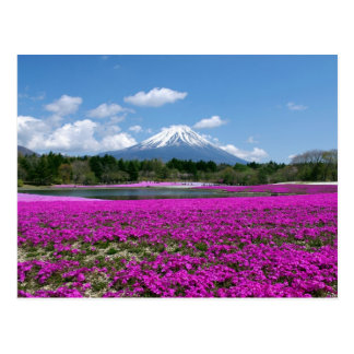Pink moss and Mt. Fuji in the background Postcard
