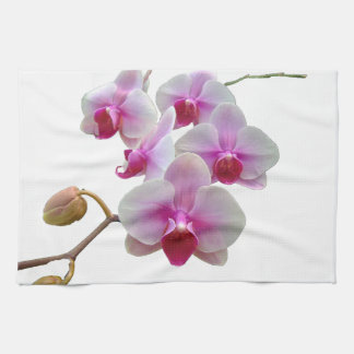 Pink Moth Orchids - Phalaenopsis Tea Towel