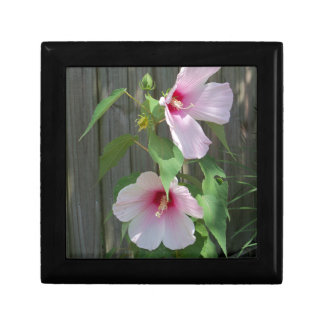 Pink on pink duo of hibiscus flowers gift box