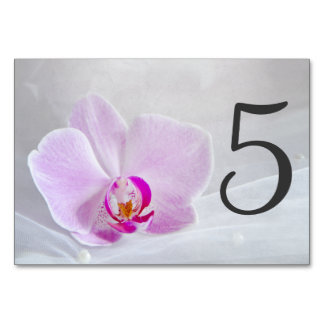 Pink Orchid and Bridal Veil Wedding Table Numbers