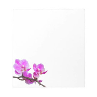 Pink Orchid Flowers Notepad
