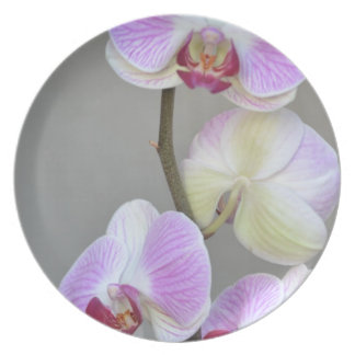 Pink Orchid Flowers Plate