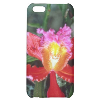 Pink Orchid, Machu Picchu flowers Cover For iPhone 5C