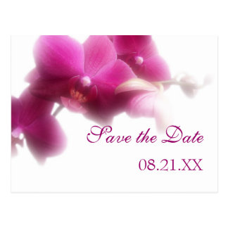 Pink Orchid Save the Date Announcement Postcard