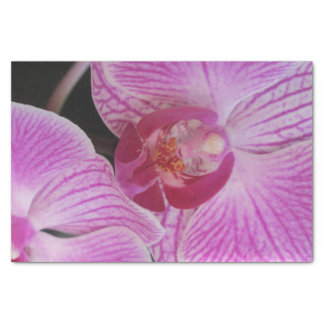Pink Orchid Tissue Paper