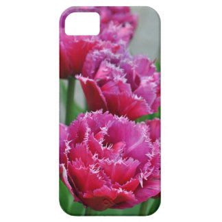 Pink parrot tulips iPhone 5 case