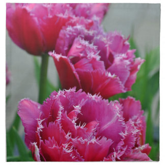 Pink parrot tulips napkin