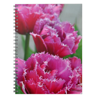 Pink parrot tulips note books