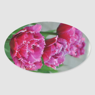 Pink parrot tulips oval sticker