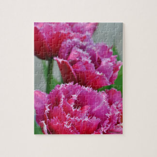 Pink parrot tulips puzzles