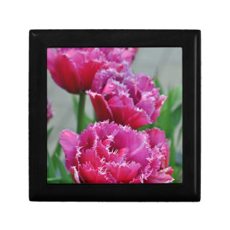 Pink parrot tulips small square gift box