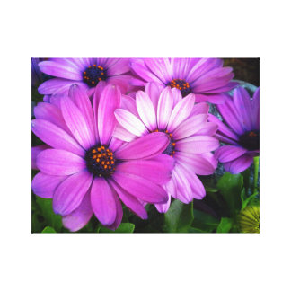 Pink Passion Flower  Canvas Poster 12 x 12