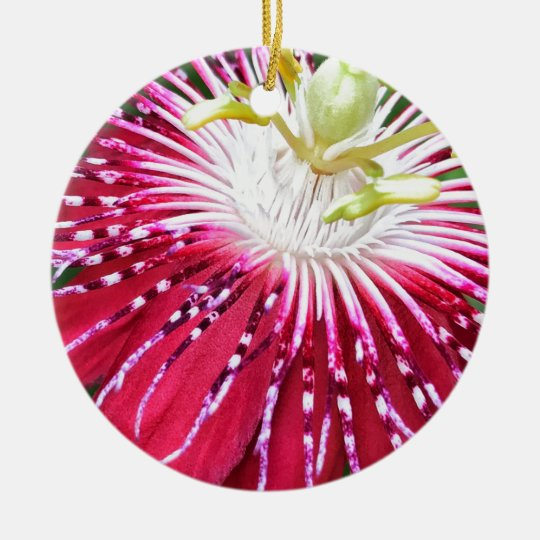 Pink Passionflower Dble-sided Ornament