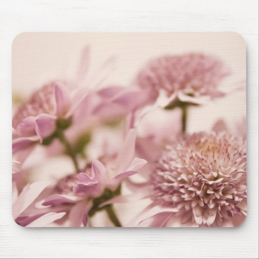 Pink Pastel Wildflowers Photograph Mouse Pads
