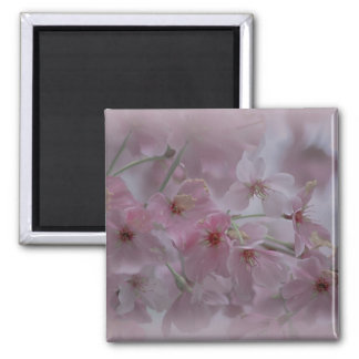 Pink Peach Blossom Magnet