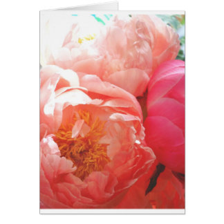 Pink Peonies -- pretty in pink! Card