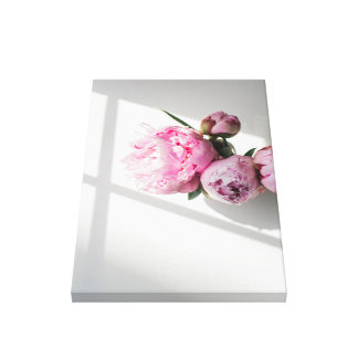 Pink peonies spring themed design, home flowers canvas print