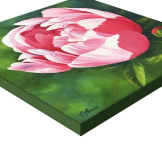 Pink Peony - Canvas 12x12