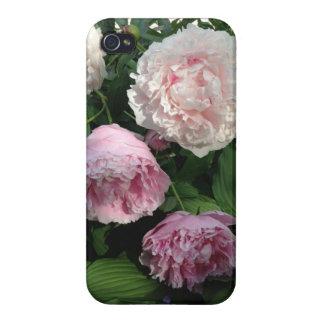 Pink Peony Flower Iphone4 Case