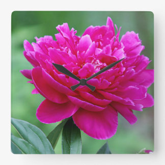 Pink peony flower square wall clock