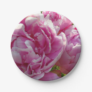 Pink Peony Paper Plate