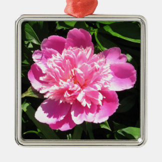 Pink Peony Silver-Colored Square Decoration
