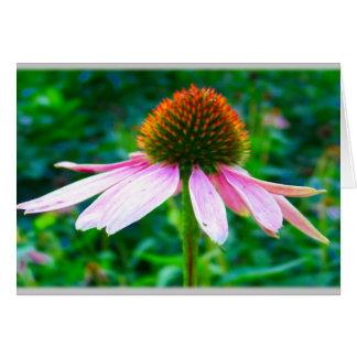 Pink Petals Floral Sympathy Card