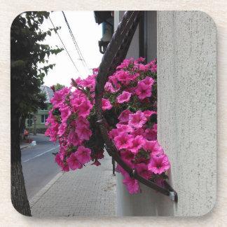Pink Petunia Blossom Coaster