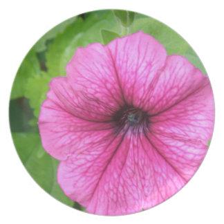 Pink Petunia Flower Plate