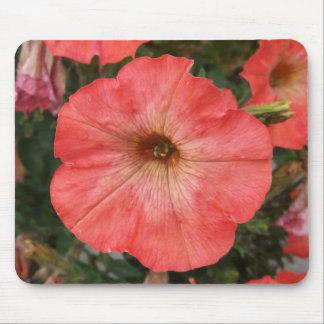 Pink Petunia Mouse Pad