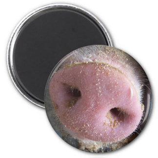Pink Pig nose close up photograph Magnets