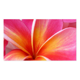 Pink Plumeria Frangipani Hawaii Flower Hawaiian Double-Sided Standard Business Cards (Pack Of 100)