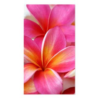 Pink Plumeria Frangipani Hawaii Flower Hawaiian Pack Of Standard Business Cards