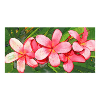Pink plumeria personalized photo card