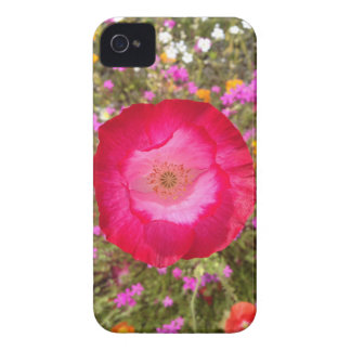 Pink Poppy Case-Mate iPhone 4 Case