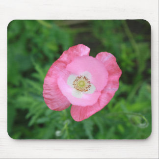 Pink Poppy Mouse Pad