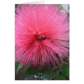Pink Powderpuff and Bumble Bee Card